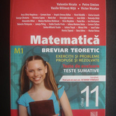MATEMATICA BREVIAR TEORETIC - EXERCITII SI PROBLEME PROPUSE SI REZOLVATE M1 - Culegere Matematica