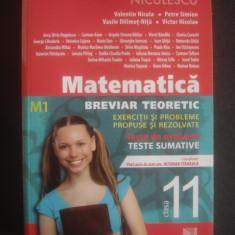 MATEMATICA BREVIAR TEORETIC - EXERCITII SI PROBLEME PROPUSE SI REZOLVATE M1