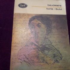 BAUDELAIRE FLORILE RAULUI/TD