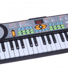 Orga muzicala pentru copii cu microfon