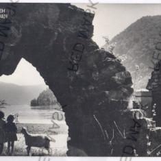 2767- ADA-KALEH, Cetatea - old postcard - unused - Carte Postala Oltenia dupa 1918, Necirculata, Printata
