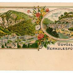 3211 - Litho, Banat, Baile HERCULANE - old postcard - unused - Carte Postala Banat pana la 1904, Necirculata, Printata