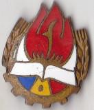 Insigna Pionieri