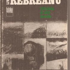 (C6335) LIVIU REBREANU - RAFUIALA SI ALTE NUVELE - Carte Antologie