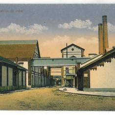 3220 - Neamt, ROMAN, Sugar Factory - old postcard - used, Circulata, Printata