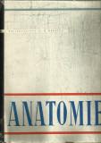 Anatomie Angiologia,glandele endocrine,sistemul nervos si organele de simt