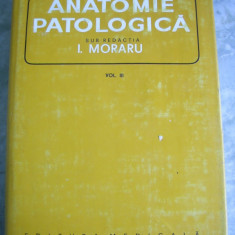 ANATOMIE PATOLOGICA VOL 3 - MORARU