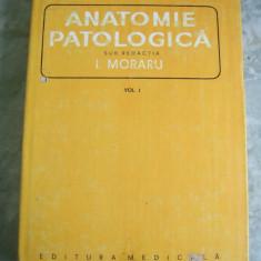 ANATOMIE PATOLOGICA VOL 1 - MORARU .