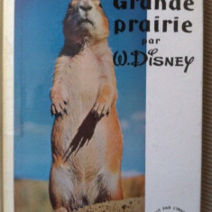 Grande prairie par W Disney foto fauna animale din prerie natura limba franceza - Carte Zoologie