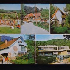 SEPT15-Vedere/Carte postala-Padurea Neagra-Bihor-Intreg postal-circulata - Carte Postala Banat dupa 1918, Necirculata, Printata
