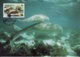 3165 - carte maxima Vanuatu 1988
