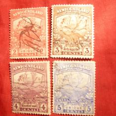 Serie mica -Cerb Caribu 1919 Terra Nova (Newfoundland)Colonie Engleza, stampilat
