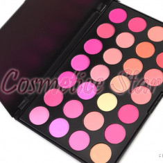 Trusa machiaj fard obraz blush 28 culori Fraulein38