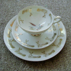 Set / Serviciu - mic dejun - portelan Bavaria - 1936, Decorative