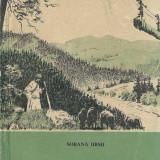 Sorana Ursu - La Baia Mare - Carte de calatorie