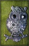 Brosa metal argintiu cu pietre bufnita