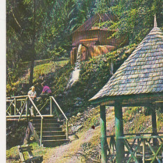 Bnk cp Stana de Vale - Izvorul minunilor - circulata - marca fixa - Carte Postala Crisana dupa 1918, Printata