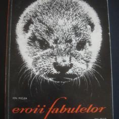 ION MICLEA - EROII FABULELOR * ALBUM ALB-NEGRU CU ANIMALE - Album Arta
