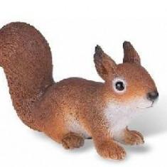 Veverita - Figurina Animale Bullyland