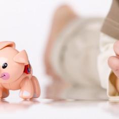 Jucarie Animal De La Ferma Purcel First Friends Tolo - Jucarie zornaitoare TOLO Toys