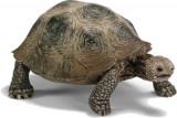 Figurina Animal Broasca Testoasa Giganta - 14601, Schleich