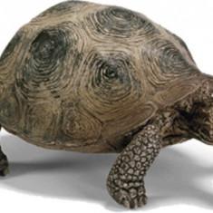 Figurina Animal Broasca Testoasa Giganta - 14601 - Figurina Animale Schleich