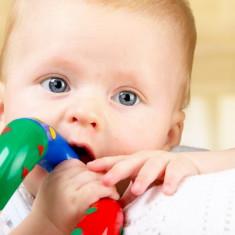 Inel Zornaitoare Rasuceste Si Intoarce Tolo - Jucarie zornaitoare TOLO Toys