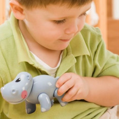 Jucarie Animal Safari First Friends Hipopotam Tolo - Jucarie zornaitoare TOLO Toys