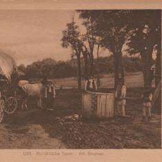 ROMANIA, TIPURI ROMANESTI - Carte postala tematica, Necirculata, Printata
