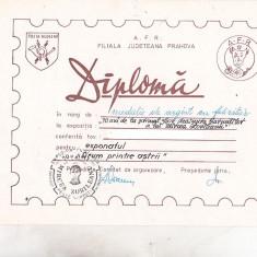 Bnk fil Diploma Expo fil Mircea Zorileanu 70 ani Ploiesti 1985