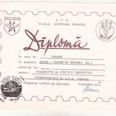 Bnk fil Diploma Expozitia filatelica Sport-Turism Busteni 1985