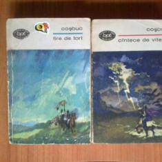 Z2 Fire de tort - Cantece de vitejie (2 volume) - Carte poezie