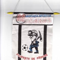 Fanion fotbal AS MINERUL FILIPESTII DE PADURE