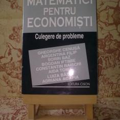"""Gheorghe Cenusa - Matematici pentru economisti culegere de probleme """"A2234"""""""