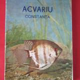Acvariu Constanta - Marcel Stanciu- 1970