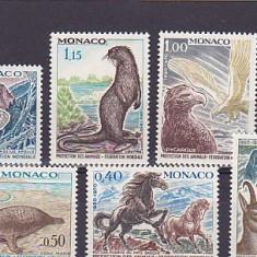 Fauna ,animale testoasa ,cai ,capre ....Monaco.