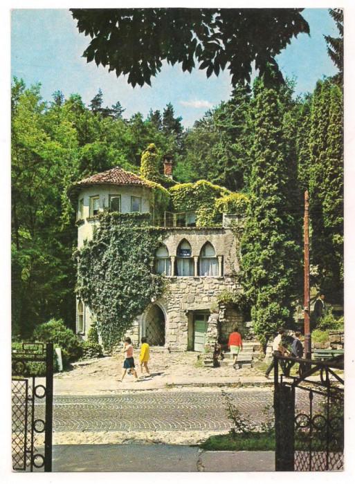 % carte postala-CALIMANESTI-Vila Florilor -VALCEA foto mare