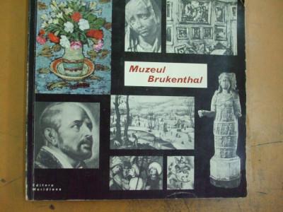 Muzeul Brukenthal galeria de arta plastica Bucuresti 1964 209 ilustratii foto