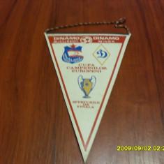 Fanion Dinamo - Dinamo Minsk - Fanion fotbal