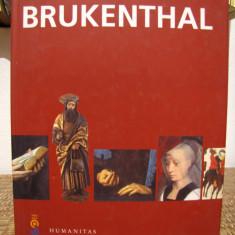 BRUKENTHAL - Album Muzee