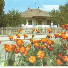CPI (B5649) BOTOSANI. CASA MEMORIALA NICOLAE IORGA - Carte Postala Moldova dupa 1918, Necirculata, Fotografie