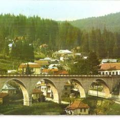CPI (B5641) BORSEC. PODUL, POD - Carte Postala Bucovina dupa 1918, Circulata, Fotografie