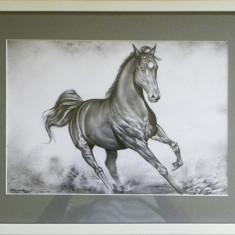 Tablou Rama alba 1.4 cm Cal in alergare, desen in creion, 39 cm x 30 cm - Reproducere