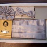 Set papion, brau si batista, culoare argintie