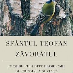 Sfantul Teofan Zavoratul - Despre felurite probleme de credinta si viata - 30187
