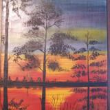 Pictura ulei pe placaj, 29 x 21 cm (Apus in Delta) - Pictor roman, Peisaje, Altul