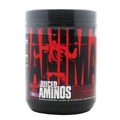 Universal Animal Juiced Aminos - Aminoacizi