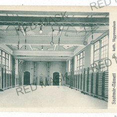 3056 - SATU-MARE, Gym - old postcard - unused, Necirculata, Printata
