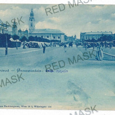 3051 - ORADEA, Market - old postcard - unused - Carte Postala Crisana 1904-1918, Necirculata, Printata