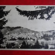 Carte postala - Vedere - Predeal - Carte Postala Banat dupa 1918, Circulata, Printata